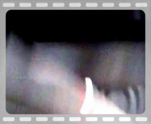 aimg.photobucket.com_albums_v318_markmk_th_Video014.jpg